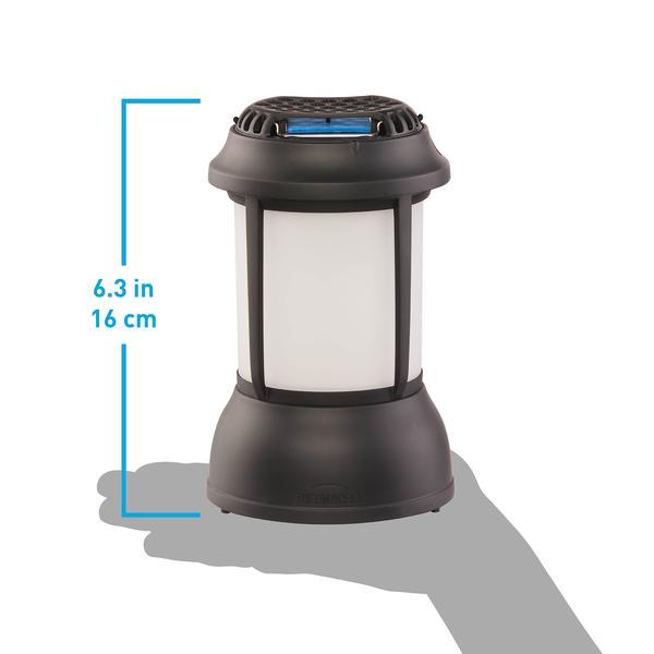 Bristol-Lantern_Size